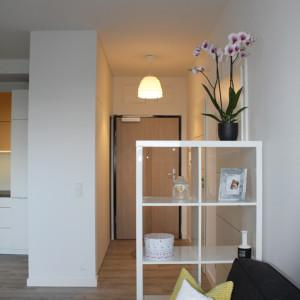 Apartamentowiec-ul. Raginisa, Szczecin/2016